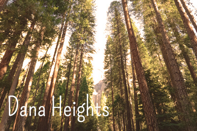 Dana Heights