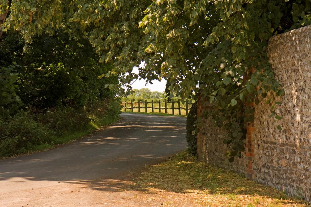 ramey lane